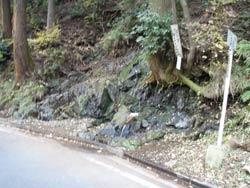 石小土の水