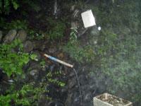 大野林道の湧き水