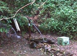 矢沢の湧き水2